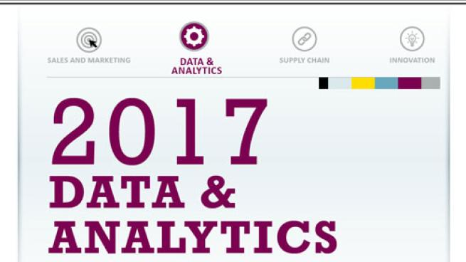 2017 Data & Analytics Technology Solutions Guide teaser image