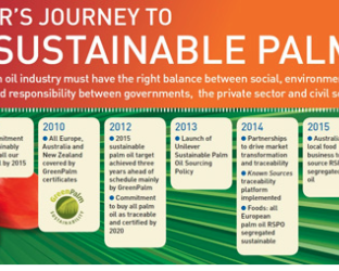 Unilever's palm oil transparency timeline